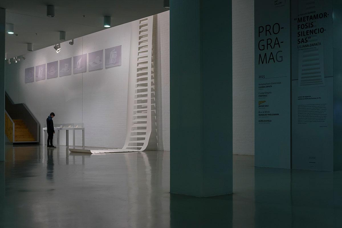Metamorfosis Silenciosas - Liliana Zapata